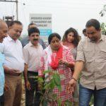 Tree Plantation Ceremony 2019